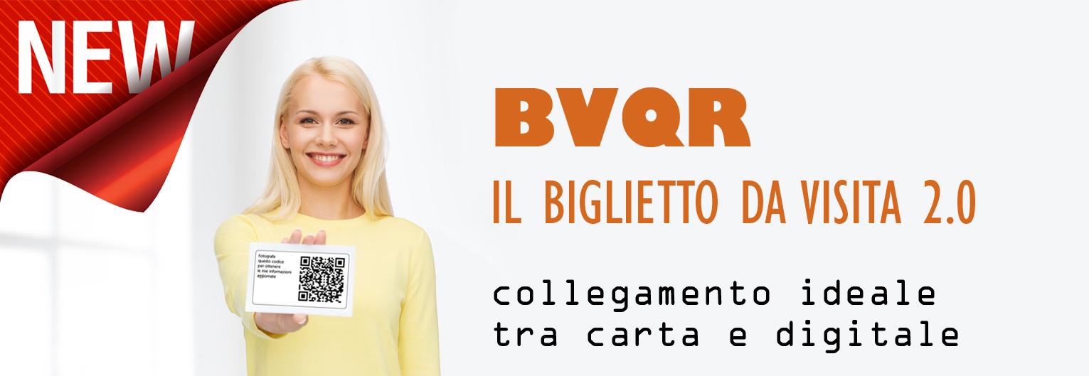 BVQR_pub2